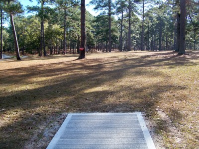 Joshua W. Franklin DGC, Main course, Hole 15 Tee pad