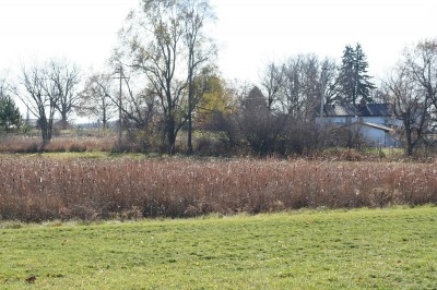 Eaton Rapids Fields, Main course, Hole 7 Long tee pad
