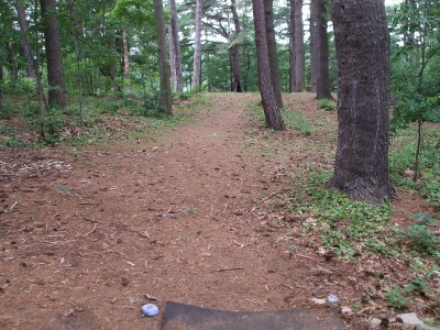 Newton Hill, Main course, Hole 6 Tee pad