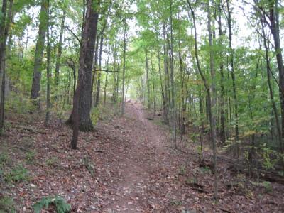 Little Creek Park, Main course, Hole 4 Tee pad