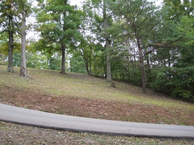 Little Creek Park, Main course, Hole 8 Tee pad