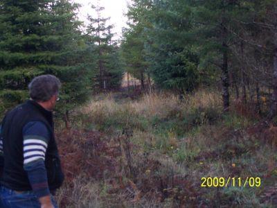 Fir Meadows, Main course, Hole 2 Tee pad