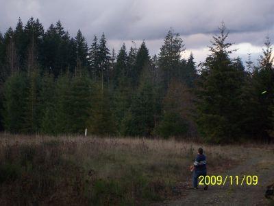 Fir Meadows, Main course, Hole 15 Middle tee pad