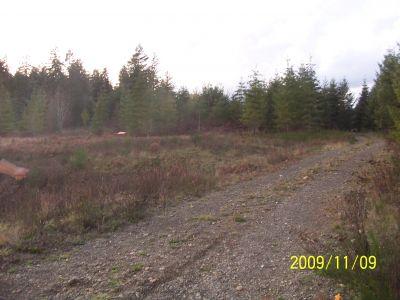 Fir Meadows, Main course, Hole 16 Middle tee pad