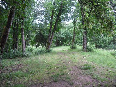 The Grove, Main course, Hole 7
