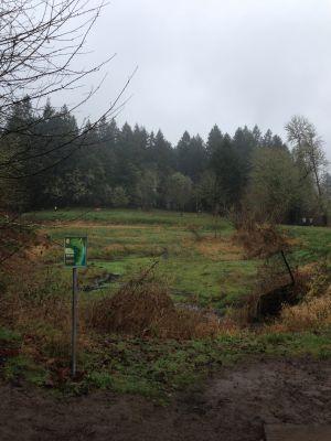 The Grove, Main course, Hole 4 Tee pad