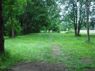 The Grove, Main course, Hole 6