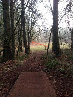 The Grove, Main course, Hole 15 Tee pad