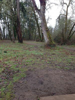 The Grove, Main course, Hole 9 Tee pad