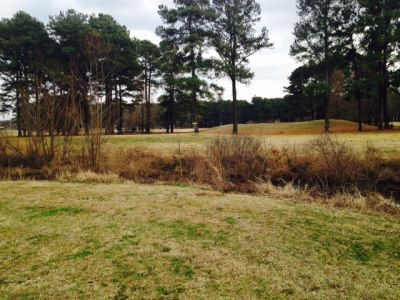 McFarland Park, Main course, Hole 14 Midrange approach