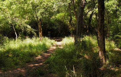 Gateway Park, West (The Privy), Hole 12 Short approach