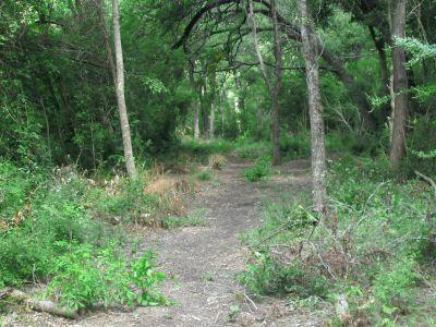 Gateway Park, West (The Privy), Hole 11 Long approach