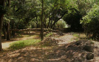 Gateway Park, West (The Privy), Hole 9 Long approach