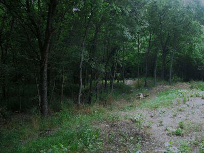 Gateway Park, West (The Privy), Hole 2 Midrange approach