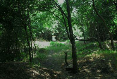 Gateway Park, West (The Privy), Hole 8 Short approach