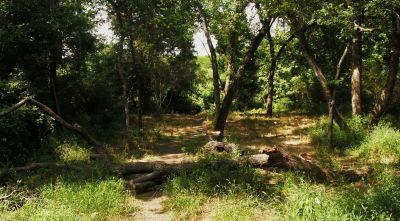 Gateway Park, West (The Privy), Hole 13 Midrange approach