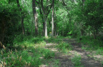 Gateway Park, West (The Privy), Hole 11 Midrange approach
