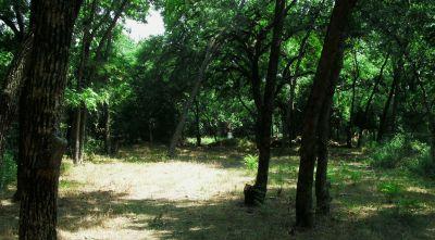 Gateway Park, West (The Privy), Hole 8 Midrange approach