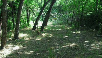 Gateway Park, West (The Privy), Hole 17 Short approach