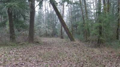 Camp Taloali, Jerry Miller DGC, Hole 9 Tee pad