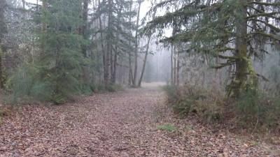 Camp Taloali, Jerry Miller DGC, Hole 3 Tee pad