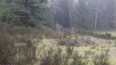Camp Taloali, Jerry Miller DGC, Hole 5 Short approach