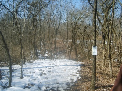 Lemon Lake County Park, White, Hole 6 Tee pad