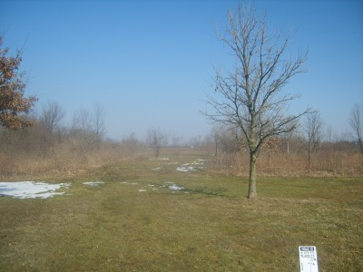 Lemon Lake County Park, White, Hole 12 Tee pad