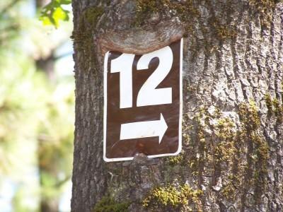 Condon Park, Main course, Hole 12 Hole sign