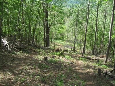 Poor House Farm Park, Main course, Hole 18 Midrange approach