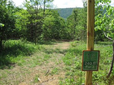 Poor House Farm Park, Main course, Hole 16 Tee pad