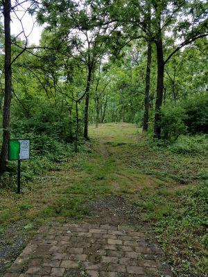 Poor House Farm Park, Main course, Hole 5 Tee pad