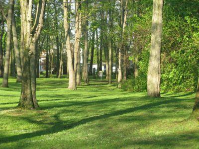Central Park Schenectady, Main course, Hole 1 Long approach