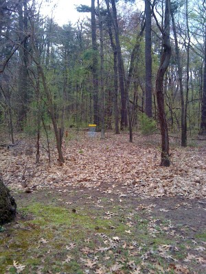 Central Park Schenectady, Main course, Hole 2 Short approach