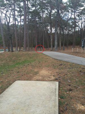 Shepherd Recreation Center, Main course, Hole 8 Tee pad