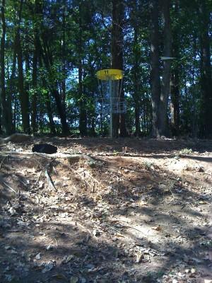 Nevin Park, Main course, Hole 11 Short approach