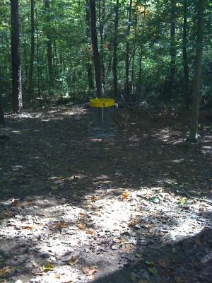 Nevin Park, Main course, Hole 5 Short approach