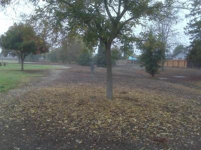 Centennial Park, Main course, Hole 2 Midrange approach