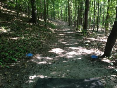 BlueGill Disc Golf Course, Main course, Hole 14 Tee pad