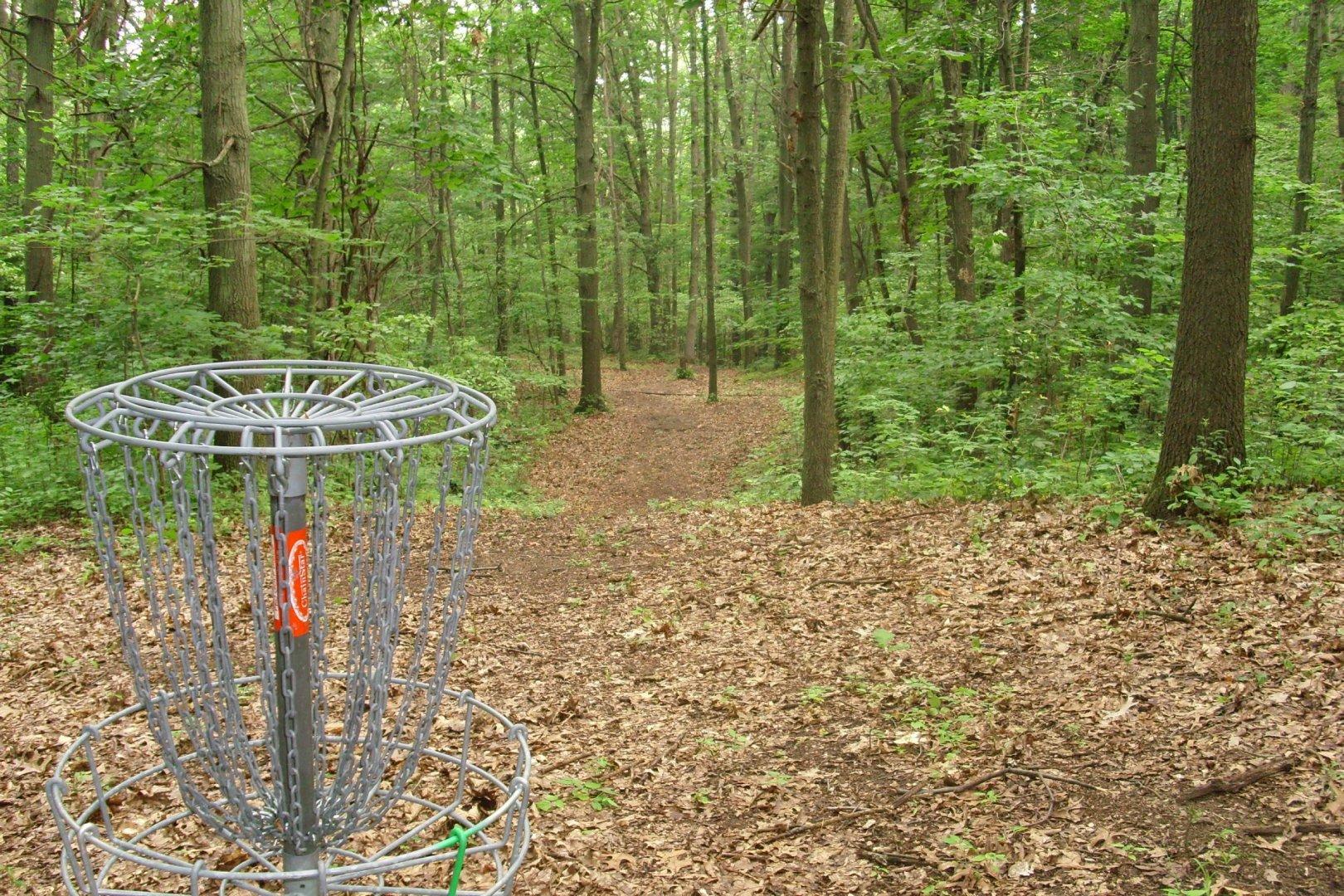 Hole 15 Bluegill Disc Golf Course Wayland Mi Disc