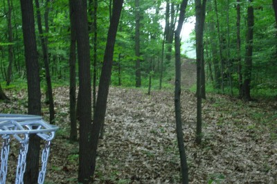 BlueGill Disc Golf Course, Main course, Hole 16 Reverse (back up the fairway)