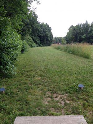 BlueGill Disc Golf Course, Main course, Hole 24 Tee pad