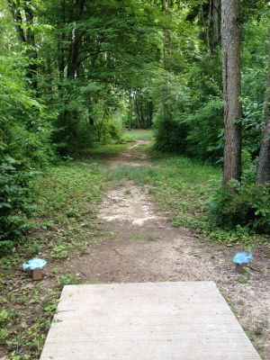 BlueGill Disc Golf Course, Main course, Hole 22 Tee pad