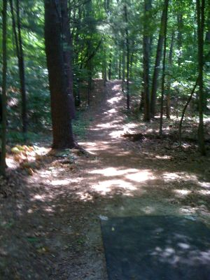 BlueGill Disc Golf Course, Main course, Hole 19 Tee pad