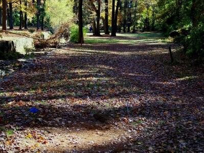 Perkerson Park, Main course, Hole 9 Long tee pad