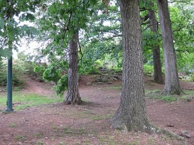 Perkerson Park, Main course, Hole 6 Short approach