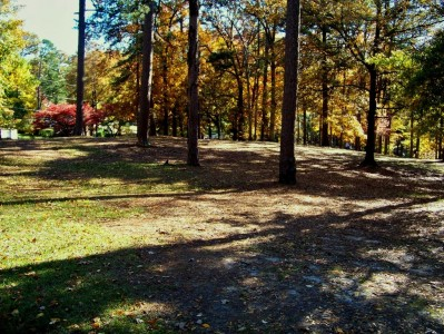 Perkerson Park, Main course, Hole 11 Midrange approach