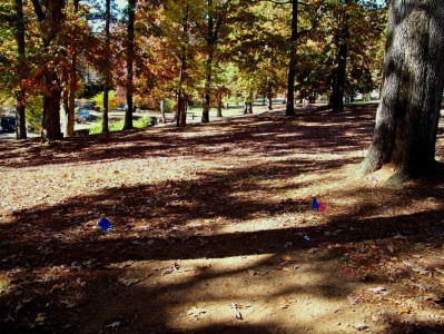Perkerson Park, Main course, Hole 1 Tee pad