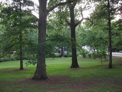 Perkerson Park, Main course, Hole 3 Midrange approach
