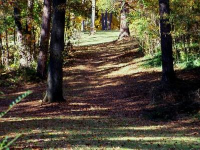 Perkerson Park, Main course, Hole 13 Long approach